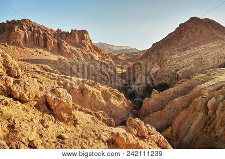 Dry Rocks In Desert, Lit By Midday Sun. Chebika Oasis, Atlas Mountains, Tunisia.