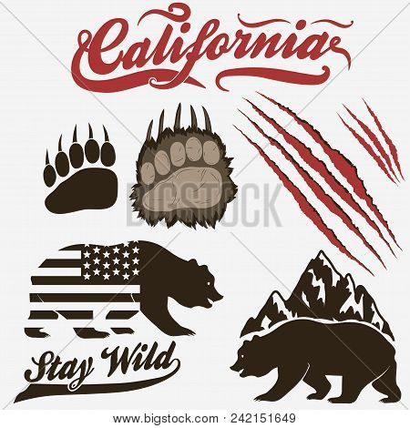 California Bear Grizzly Footprint Paw Print With Claw Scratches Set Vector
