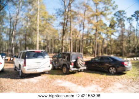 Blurred Outdoor Parking Lots Near Forest Tall Live Oak Tree In Usa