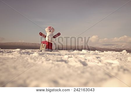 Happy New Year With Snowman. Snowmans Happy Couple. Snowmans Celebration. Snowman In Pink Wig And Mi