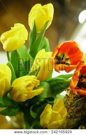 Flower Bouquet Of Red And Yellow Tulips. Spring Mood.