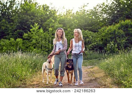 Happy Laughing Young Women Walking Their Dogs Along A Grassy Rural Track In Spring Together Sharing