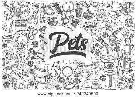 Hand Drawn Pets Doodle Set. Lettering - Pets