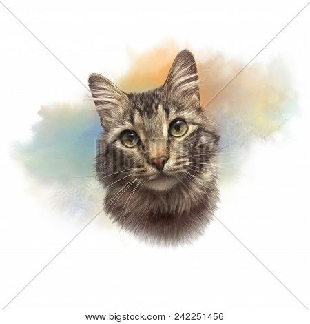 Striped Cat. Realistic Watercolor Portrait Of A Pet. Drawing Of Cat With Green Eyes Executed In Wate