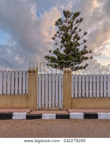 White Weathered Wooden Garden Gate And Fence With Background Of Single Tree And Cloudy Sky At Sunris