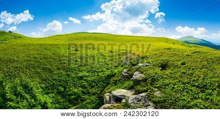 Panorama Of The Hillside Meadow. Lovely Summer Landscape With Boulders Among The Grass. Location Run