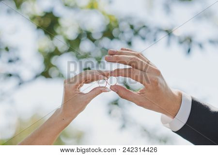 Palms Of The Newly-married Couple With Wedding Rings In Fingers.