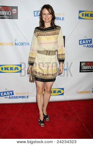 LOS ANGELES - OCT 10:  Mary Lynn Rajskub arriving at the Web-series