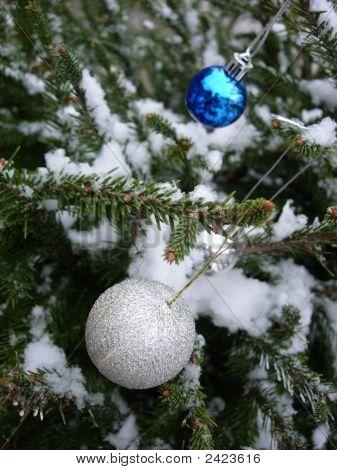 Christmas Tree Under Snow