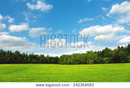 Ideal green field and sky.Great as a background.