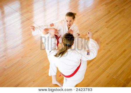 High Martial Arts Kicking