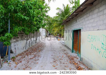 View Of Village Street Of One Of Maldive Islands. Green Trees And Old Buildings. Poor Environment. L