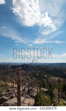Harney Peak / Black Elk Peak Hiking Trail Number 9 In Custer State Peak In The Black Hills Of South