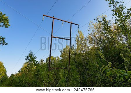 The Power Line In The Forest . The Power Line In The Forest