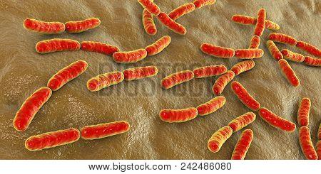 Bacteria Lactobacillus, 3d Illustration. Normal Flora Of Small Intestine, Lactic Acid Bacteria. Prob