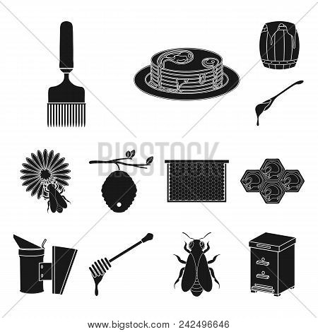 Apiary And Beekeeping Black Icons In Set Collection For Design.equipment And Production Of Honey Vec