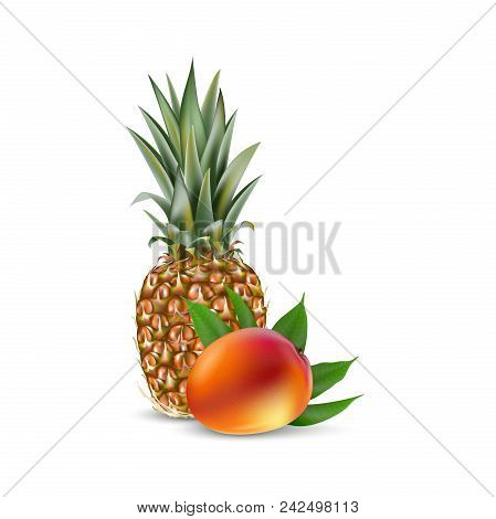 Mango And Pinele Realistic Vector Eps 10 Packaging Template Brand Advertising