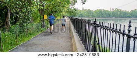 Typical Path For Jogging In Central Park, New York City, Usa