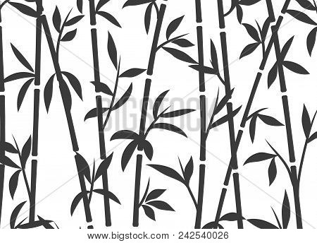 Bamboo Background Japanese Asian Plant Wallpaper Grass. Bamboo Tree Vector Pattern Black And White.