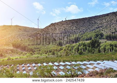 Landscape With Installation Of Renewable Energies. Solar Panels And Electric Wind Generators.