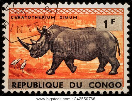 Luga, Russia - January 23, 2018: A Stamp Printed By Congo Shows White Rhinoceros Or Square-lipped Rh