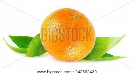 Isolated Orange. One Whole Orange Fruit On Fresh Leaves Isolated On White Background With Clipping P