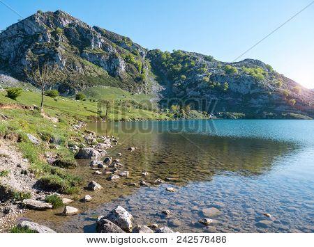 Alpine Mountain Lake Landscape Near Covadonga. Enol Lake In The Picos De Europa National Park, Spain