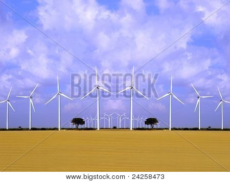 Wind energy field with wind turbines