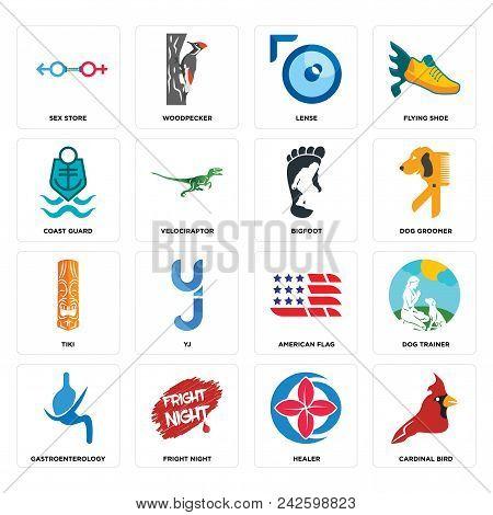 Set Of 16 Simple Editable Icons Such As Cardinal Bird, Healer, Fright Night, Gastroenterology, Dog T