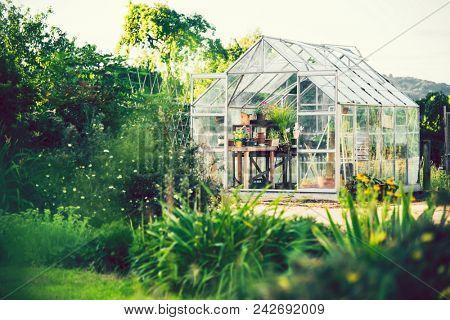 Greenhouse in an idyllic garden