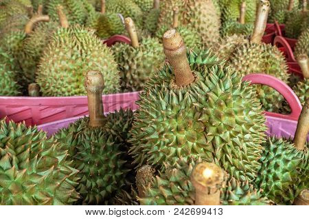 Durian Fruit For Sale To Customers In The Basket. Durian Market In Thailand.