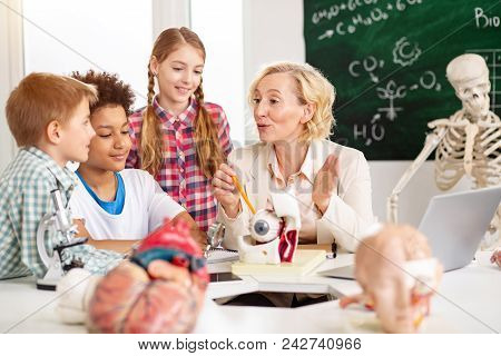 School Classes. Professional Nice Teacher Sitting At The Table While Having A Class On Anatomy