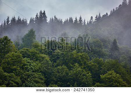 Parang Mountains In Romania