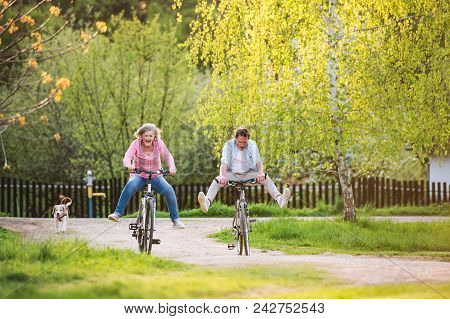 Beautiful Senior Couple With Bicycles Cycling Outside In Spring Nature, Having Fun.