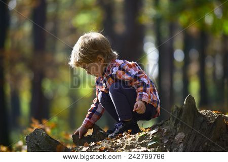Autumn Vacation And Camping. Activity And Active Rest For Kid. Child Play On Fresh Air Outdoor. Litt