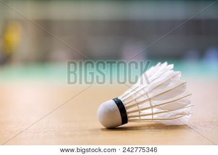 Shuttlecock Put On Floor Badminton Court - For Sport Background Or Texture.