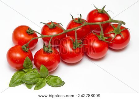 Vine Tomatoes A Closeup Image Of Vine Tomatoes With Basil