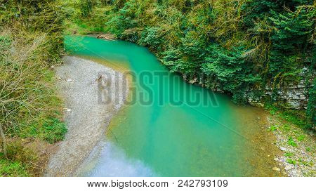Drone View Of Canyon And Khosta River In Yew And Box-tree Grove In Spring Day, Sochi, Russia