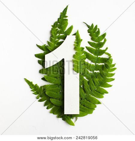 Floral Number One. Beautiful Green Leaves And Fern Foliage Numbers. Great For Weddings Table Cards.