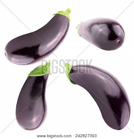 Isolated Eggplant. Collection Of Four Fresh Eggplant Over White Background With Clipping Path As A P