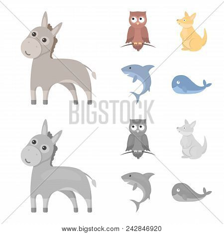 Donkey, Owl, Kangaroo, Shark.animal Set Collection Icons In Cartoon, Monochrome Style Vector Symbol