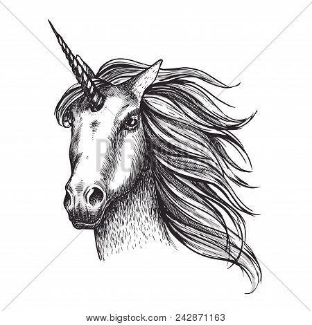 Unicorn Mystic Fairy Horse Head Sketch Icon Of With Magic Horn. Vector Unicorn Horse Muzzle With Wav