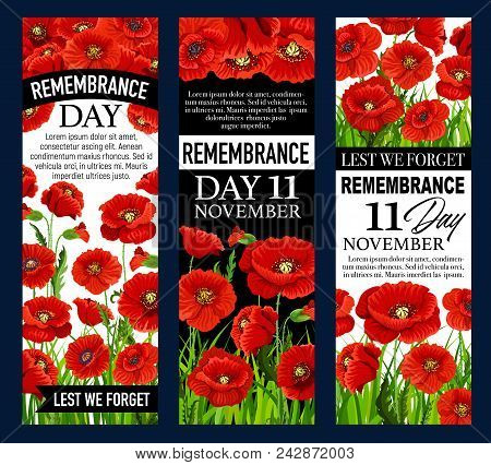 Poppy Day Banner Set For 11 November Remembrance Day Template. Red Poppy Flower Memorial Card With L