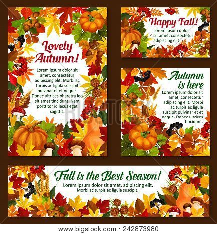 Autumn Seasonal Greeting Cards Of Posters Of Falling Leaves And Fall Harvest. Vector Pumpkin, Rowanb