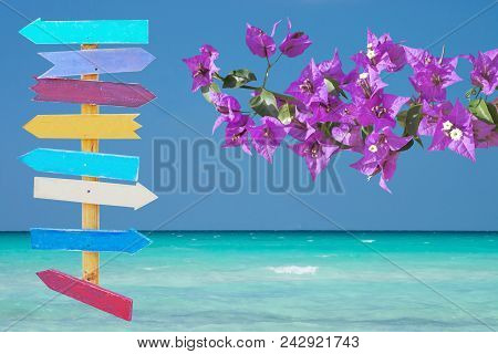 Beautiful Ocean Landscape With Sea Sky And Horizon And Pink Bougainvillea Wooden Signpost Decor Back
