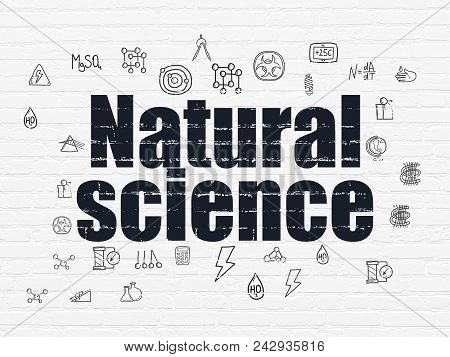 Science Concept: Painted Black Text Natural Science On White Brick Wall Background With  Hand Drawn