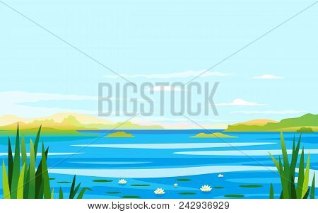 Cane And Water Lilies On The River, Fishing Place, Water Landscape Background. Picturesque Place Nea