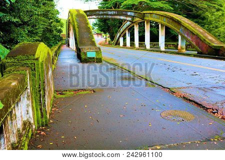 Bridge Covered In Moss Over The Wailuku River Surrounded By A Tropical Rain Forest Taken In Hilo, Hi