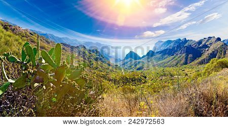 Scenery Valley In Spain.nature Landscape.travel Adventures And Outdoor .masca Valley.canary Island.t