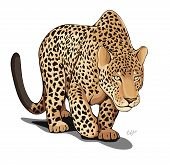 The vector image preparing to a jump leopard. Without a background. poster